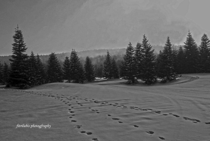 Location: Uludag Mountain, Bursa, Turkey. Camera: Canon 1000D